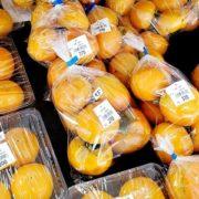 柿の出荷が始まりました