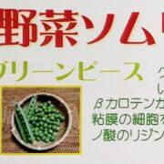 野菜ソムリエ5月のおすすめ