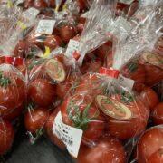 旬のトマトが出荷!